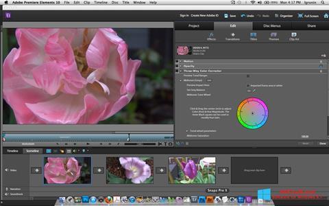 Screenshot Adobe Premiere Elements Windows 8.1