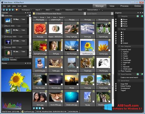 Screenshot ACDSee Windows 8.1