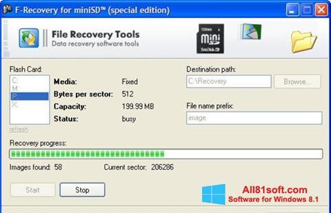 Screenshot F-Recovery SD Windows 8.1