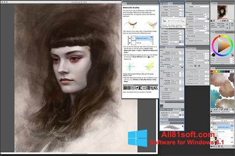 Screenshot Corel Painter Windows 8.1