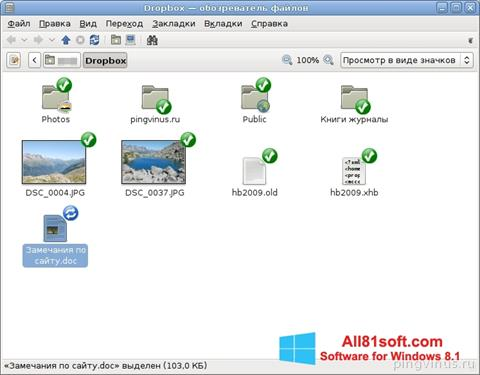 Screenshot Dropbox Windows 8.1