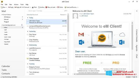 Screenshot eM Client Windows 8.1
