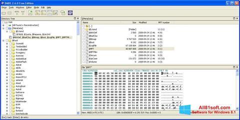 Screenshot DMDE Windows 8.1
