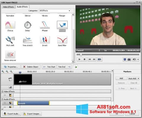 Screenshot AVS Video Converter Windows 8.1