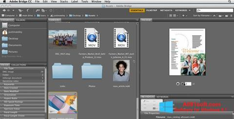 Screenshot Adobe Bridge Windows 8.1