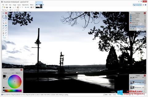 Screenshot Paint.NET Windows 8.1