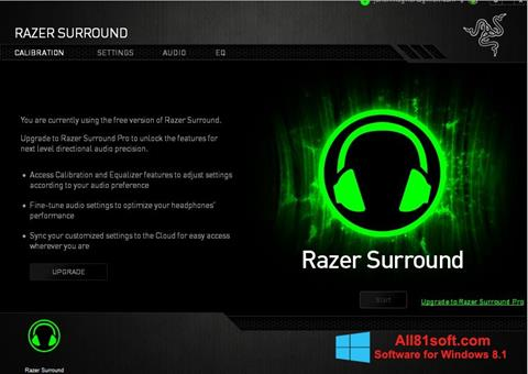 Screenshot Razer Surround Windows 8.1