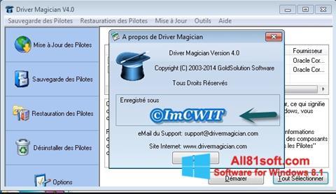 Screenshot Driver Magician Windows 8.1