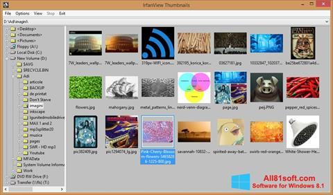 Screenshot IrfanView Windows 8.1